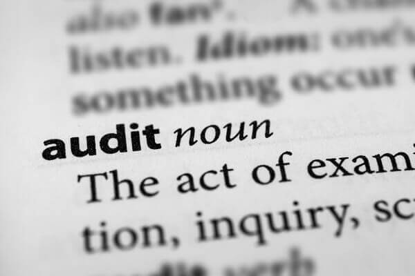 ZPIC audit dictionary definition